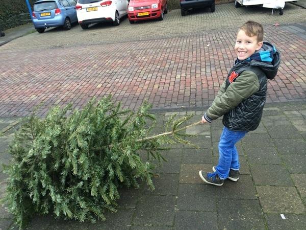 Krimpenerwaard versnippert kerstbomen