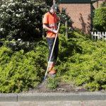 'Groenonderhoud laat nog steeds te wensen over'