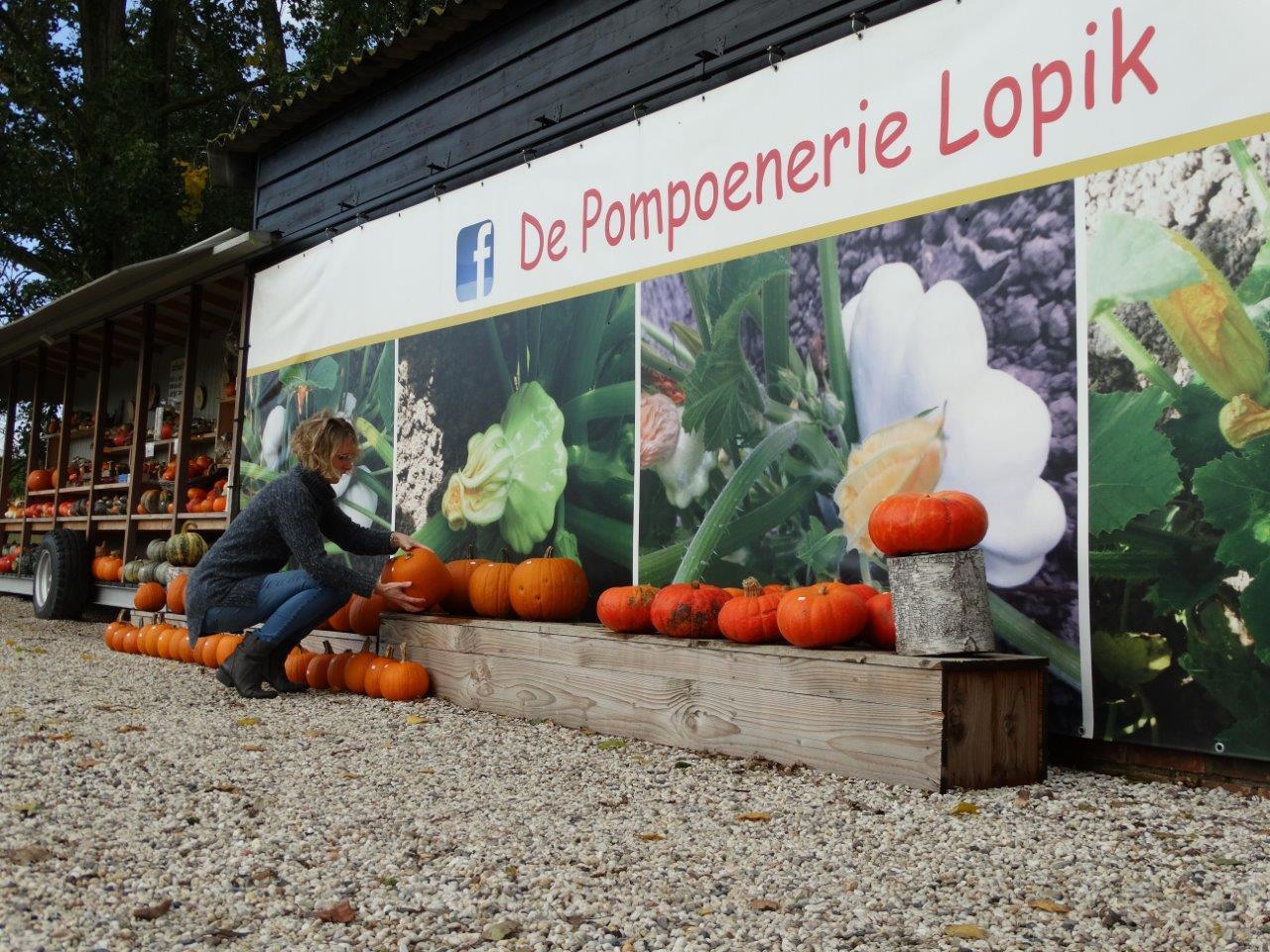 Pompoenerie Lopik geeft kleur in herfsttijd