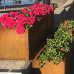 Bloembakken fleuren Voorstraat Lekkerkerk op