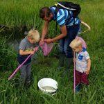 Burgeronderzoek: kwaliteit kleine wateren vaak niet goed