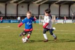 Voetbalvereniging DCV timmert goed aan de weg