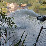 Dode vissen in water Waalplantsoen Krimpen aan den IJssel