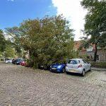 Boom valt op geparkeerde auto's in Schoonhoven