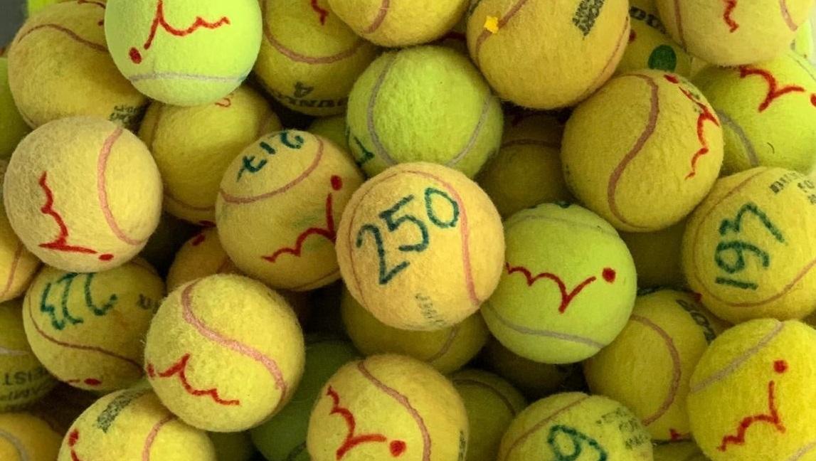 Activiteit Waardse Kids/Sport BSO de Waard: alle ballen verzamelen